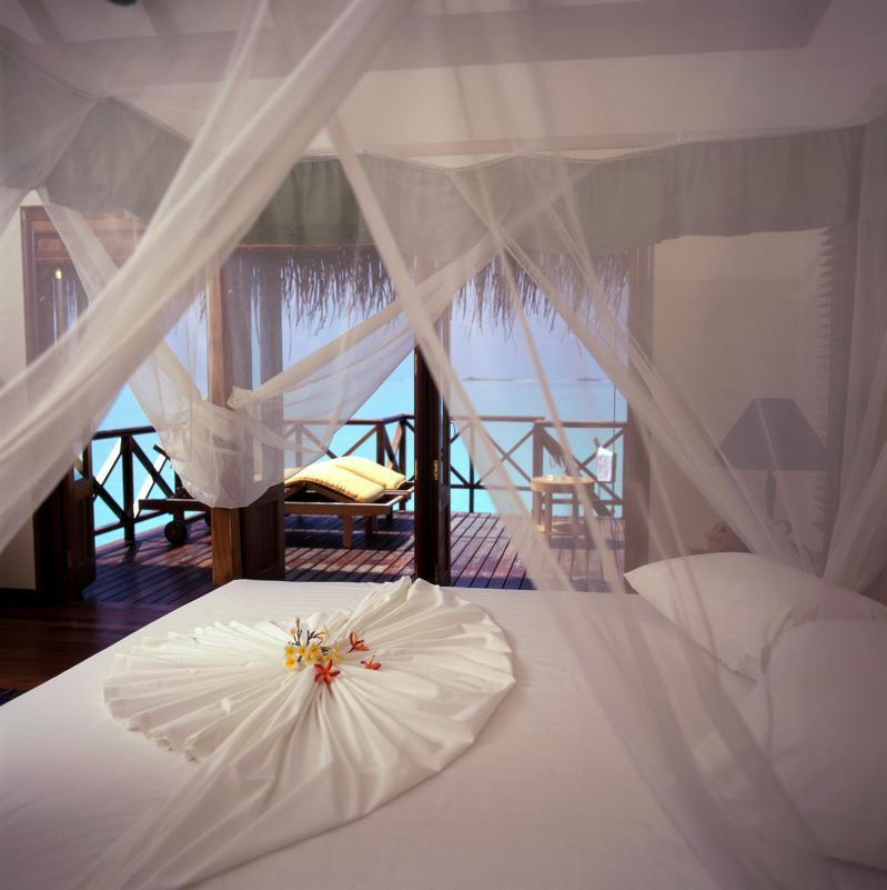 Comforters & Bedding